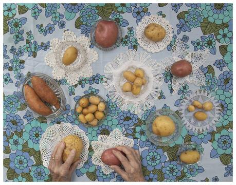 Potato Photo Competition